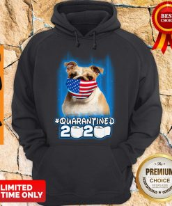 Nice Pug Face Mask American Flag Quarantined 2020 Toilet Paper Hoodie