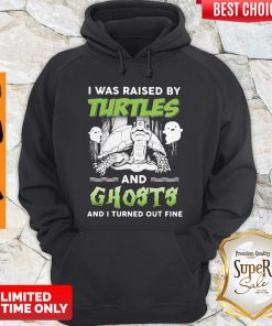 Top I Was Raised By Turtles And Ghosts And I Turned Out Fine Hoodie