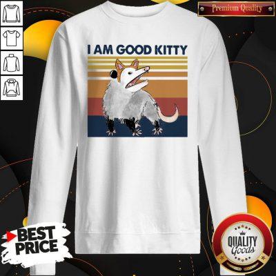 Good Opossum I Am Good Kitty Vintage Sweatshirt