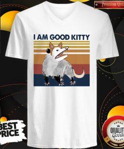 Good Opossum I Am Good Kitty Vintage V-neck