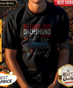 Hot 5 For Rules Dachshund Owners It Is My Walk I Get Up When Want Shirt