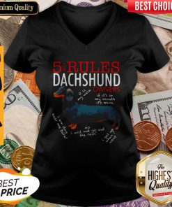 Hot 5 For Rules Dachshund Owners It Is My Walk I Get Up When Want V-neck