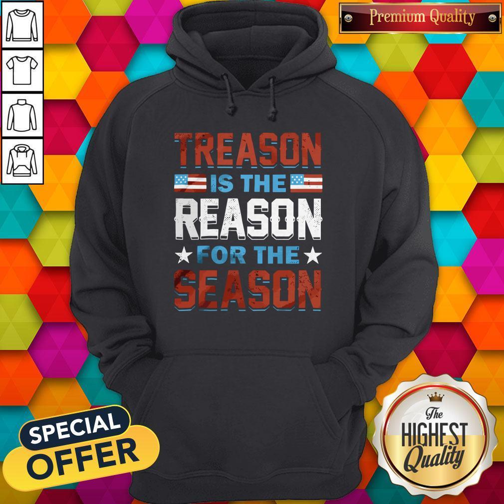 Hot Treason Is The Reason For The Season Hoodie