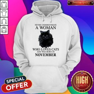 Premium Never Underestimate A Woman Who Loves Cats And Was Born In NOVEMBER Hoodie