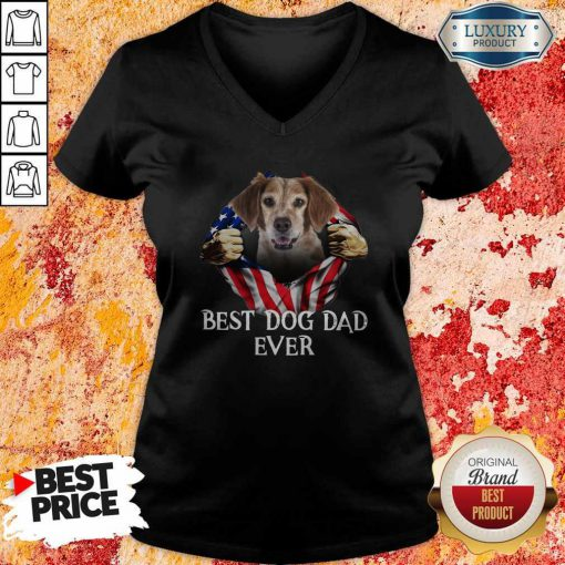 Pretty Blood Inside Me Brittany Dog American Flag Best Dog Dad Ever V-neck