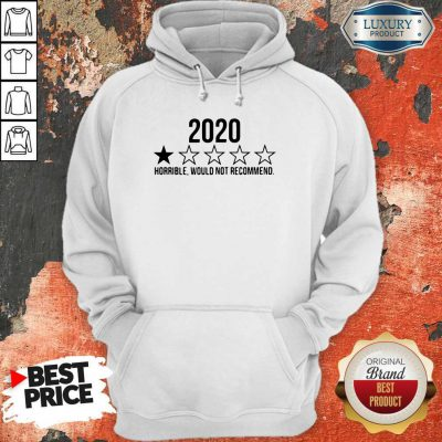 Funny 2020 Horrible Would Not Recommend Hoodie
