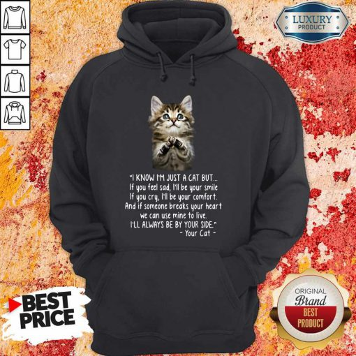 Pretty I Know I'm Just A Cat But If You Feel Sad I'll Be Your Smile Hoodie
