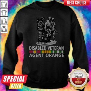 So Beautiful Disabled Veteran Agent Orange Sweatshirt