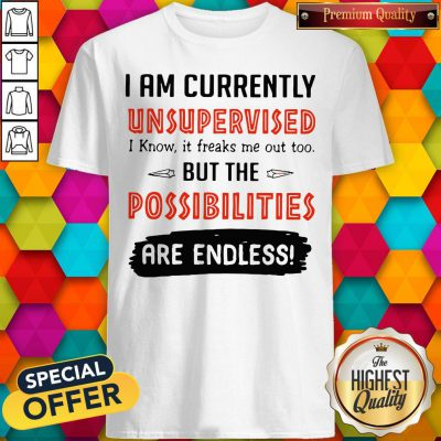 Wonderful I'm Currently Unsupervised I Know It Freaks Me Out Too But The Possibilities Shirt