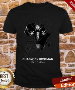 The Superhero Black Panther In The Marvel Cinematic Universe Rip Shirt