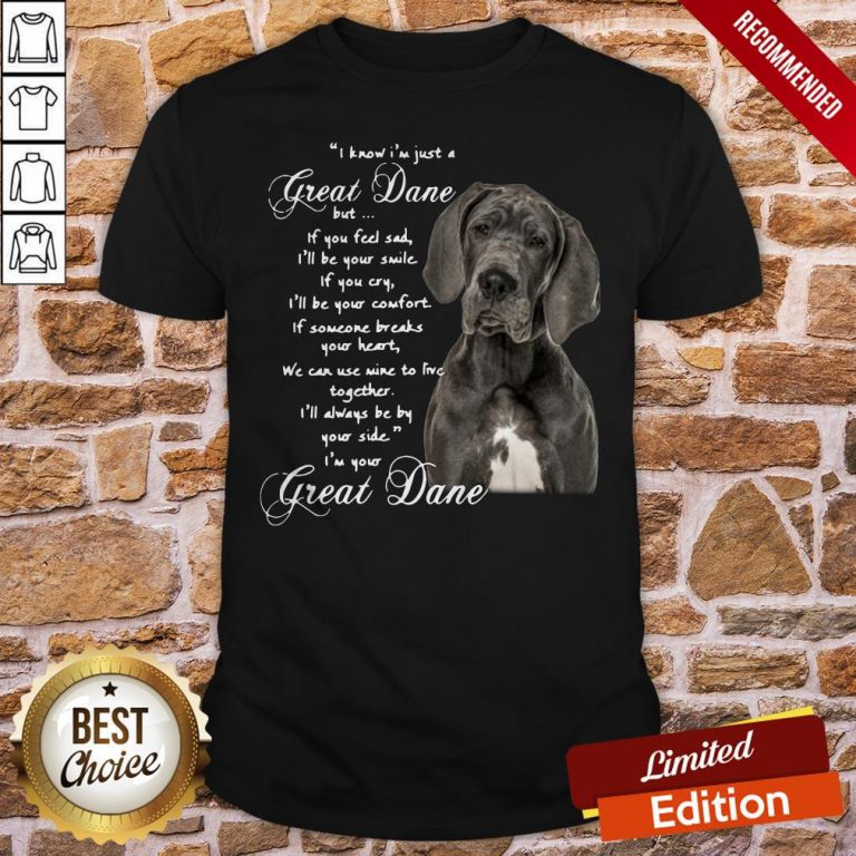 I Know I'm Just A Great Dane But If You Feel Sad I'll Be Your Smile If You Cry Shirt