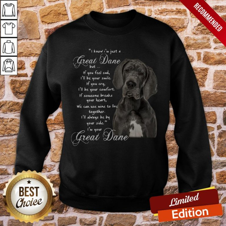 I Know I'm Just A Great Dane But If You Feel Sad I'll Be Your Smile If You Cry Sweatshirt