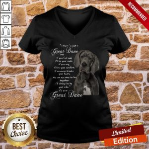 I Know I'm Just A Great Dane But If You Feel Sad I'll Be Your Smile If You Cry V-neck