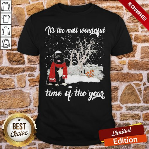 Newfoundland It's The Most Wonderful Time Of The Year Shirt