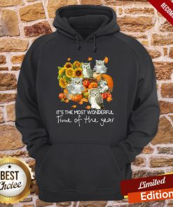 Owl It's The Most Wonderful Time Of The Year Hoodie