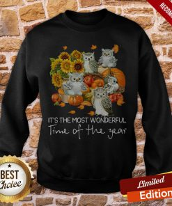 Owl It's The Most Wonderful Time Of The Year Sweatshirt