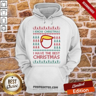 Premium I Know Christmas- I Have The Best Christmas Hoodie-Design By Proposetees.com