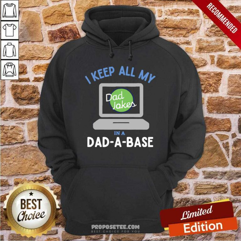 I Keep All My Dad Jokes In A Dad A Base Dad Jokes Hoodie-Design By Proposetees.com