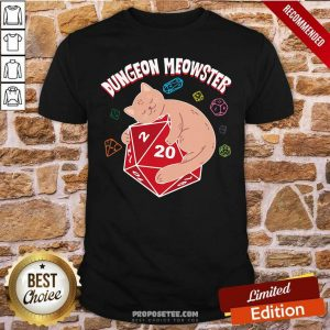 Dungeon Meowster Shirt-Design By Proposetees.com