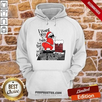 Santa Claus I Want You To Park That Big Red And Light Right On This Rooftop Ugly Christmas Hoodie-Design By Proposetees.com