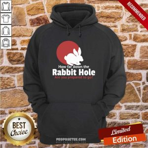 How Far Down The Rabbit Hole Are You Prepared To Go Hoodie-Design By Proposetees.com